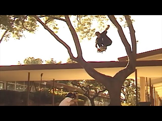 Fuck This Video Four | TransWorld SKATEboarding